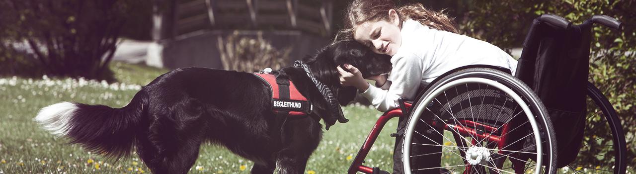 El poder de los animales como co-terapeutas