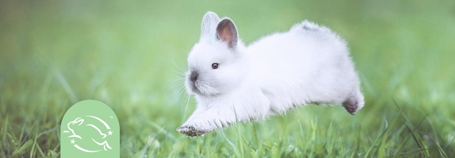 Cosmética cruelty free que no maltrata animales