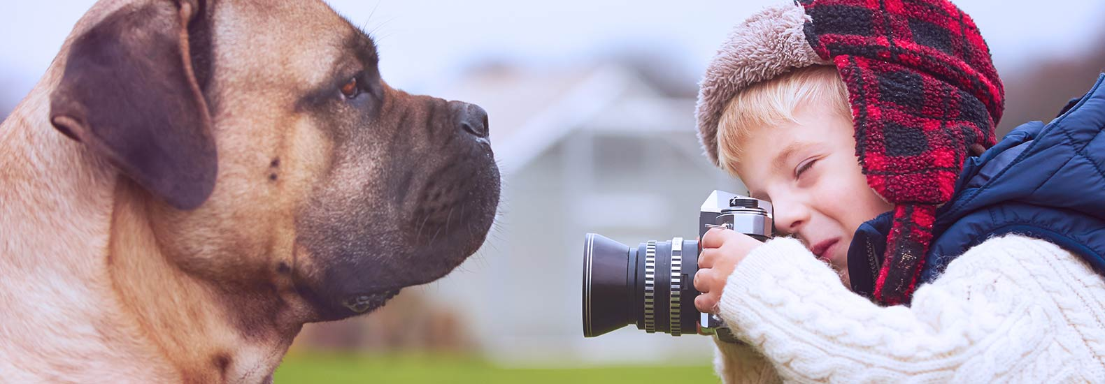 7 Dog Instagram Pages Guaranteed to Make Your Day