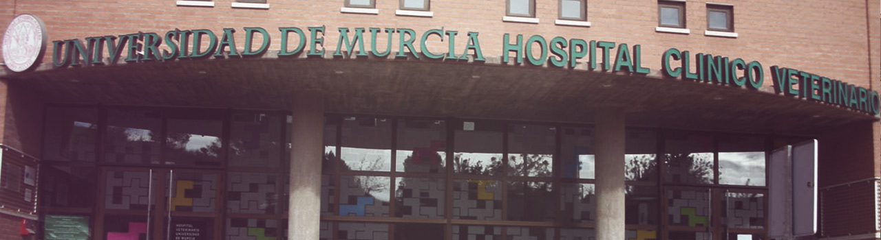Colaboración con el Hospital Veterinario de la Universidad de Murcia