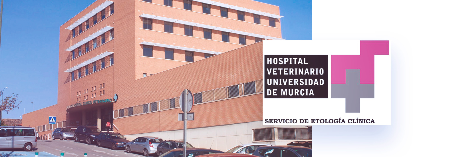 Collaboration with the Veterinary Hospital of the University of Murcia