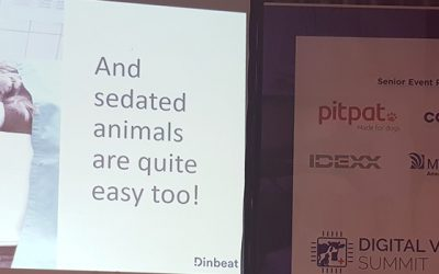 Dinbeat, one of the 12 StartUps selected to participate in the Digital Veterinary Summit 2019 in London