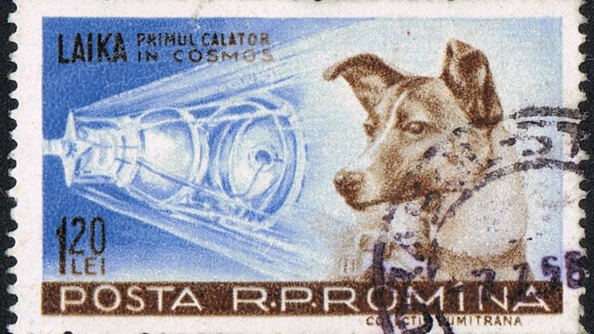 la historia jamás contada de laika la perra astronauta sello